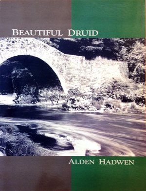 Beautiful Druid Cover